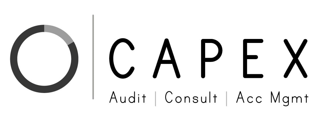 Auditing company in Dubai CAPEX auditing, BEST audit firm, auditing service and top auditors in Dubai and UAE
